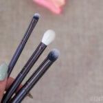 Elysium Brushes