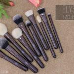 Elysium Brushes - Face Bundle